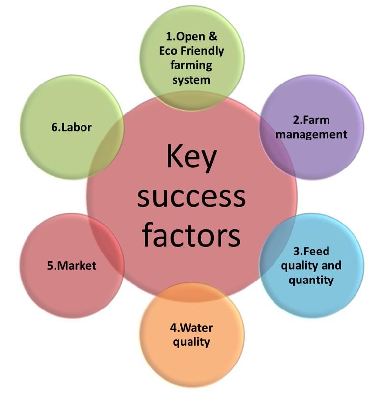 interpol key factors of success 2 ipec coaching replication study: key factor revealed for determining success in work and in life or average resonating level of energy), the greater overall.